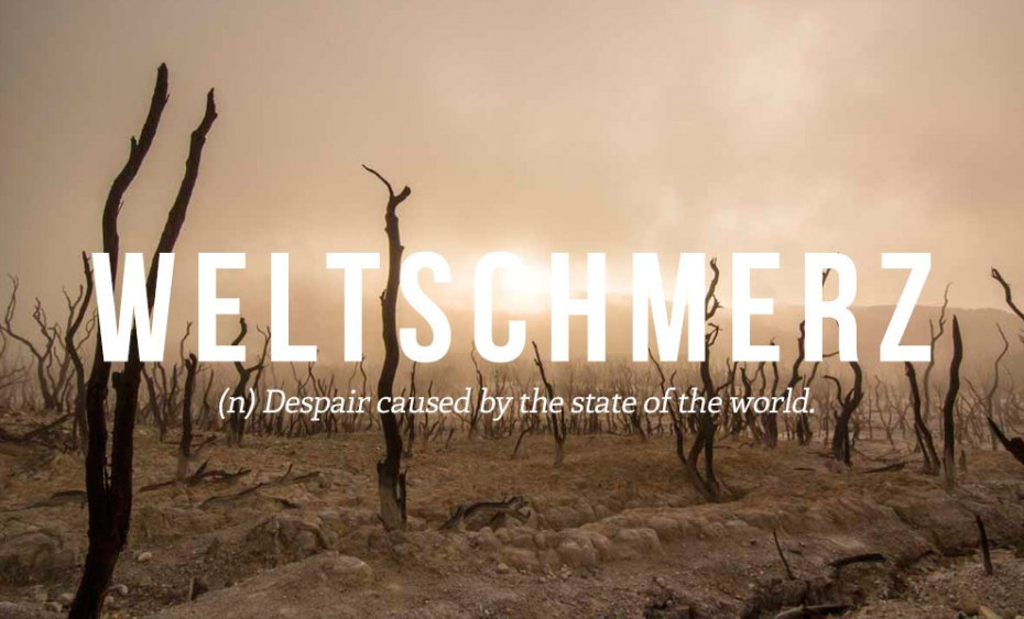 Weltschmerz: Despair caused by the state of the world.